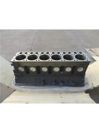 Блок двигателя WP10 EVB